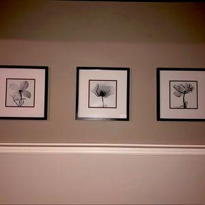 Set of 3 black white framed matted flower prints